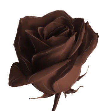 rose en chocolat pour miss nut